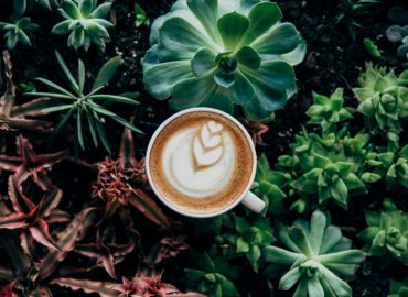 insurance for cost of coffee